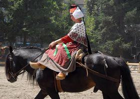 cheval du Biros photo ANCC (6)