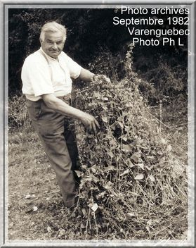 Varenguebec-0011e