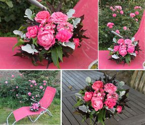 pink bubble roses