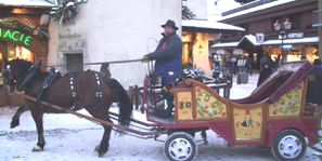 cheval- Megève.photo F. DUVILLARD (4)