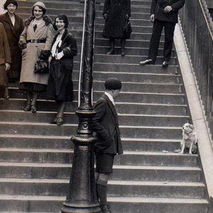chien-escalier-muller8.jpg