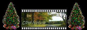 nature noël