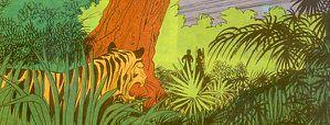 chasse-au-tigrec 7