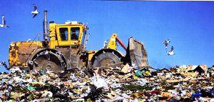 Gaspillage--illustration.jpg