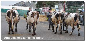 2014-Chandeleur-0089