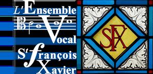 logo-evsfx_modifie004_modifie-3.png
