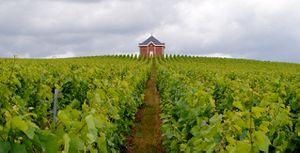 Loge de Saran 3 - Chouilly - Marne - Pascal Levaillant jui
