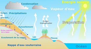 cycle eau nature