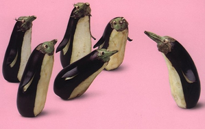 aubergines-pingouins.png