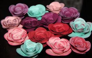 flowers stampin up