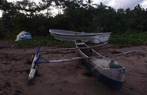 pirogue bambo