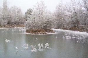 le-froid-de-l-hiver-france-bourgogne_93625.jpg