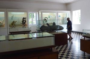 museum2a