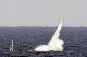 missile_syrie_zoom945.jpg