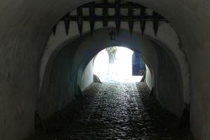Voyage en Transylvanie du Sud : des villages saxons au château de Dracula 8