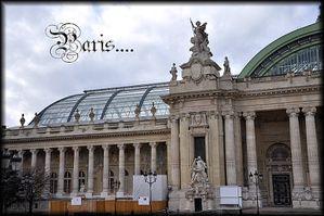 Grand-Palais-10aa.jpg