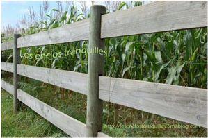 Exemple de clôture avec des lices en bois. Copyright : Les enclos tranquilles