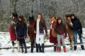 concours pony game1