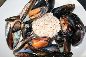 moules-curry-11-10.jpg