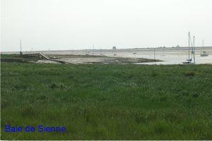 baie de Sienne1