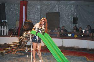 photos-2011 0048