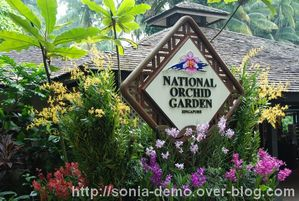 jardin national orchidee