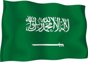 saudi_arabia_flag1.jpg