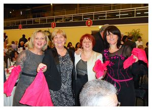 Chiffons-rouges-fete-Rose-2013.jpg