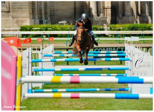 Global Champions Tour Chantilly 05
