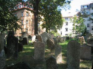 Vieux cimetière juif de Prague 5769