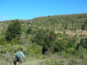 mai14 Albas Roque blanche (9)