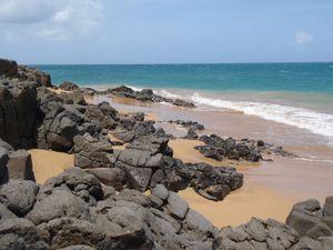 plages Deshaies 6