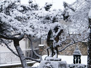 neige2-020.JPG