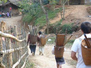 -34--transport-du-bois-Hmong.JPG
