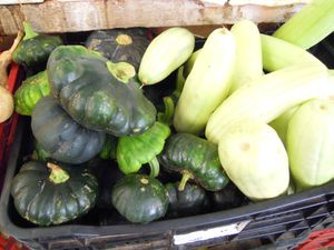 8-courgettes-locales---calabasse-.JPG