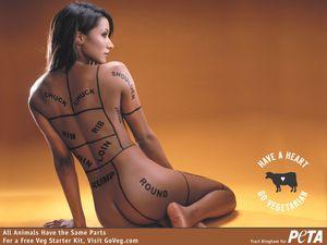 peta-nude-traci-bingham-advertisement-vegetarian.jpg