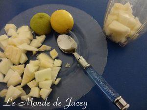 Melonenshake (2)