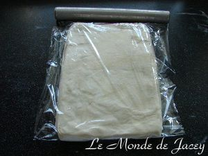 Mille feuille (13)