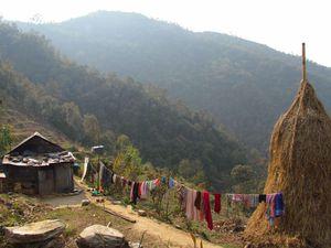 NEPAL 4815