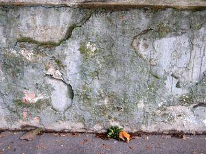 murs_21.jpg