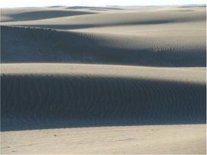 Dune--Espiguette----1.jpg