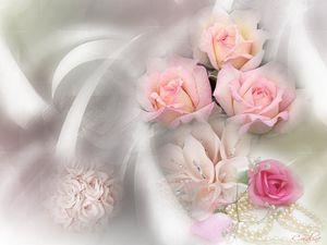 roses_camaieux_01.jpg