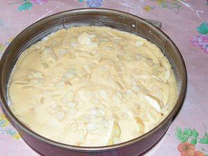 biscuit-aux-pommes-et-a-la-vanille--5-.JPG