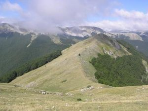 Parco-Nazionale-d-abruzzo-4.jpg