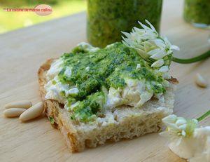Tartine-de-fromage-de-chevre-au-pest-d-ailm-des-ours.jpg
