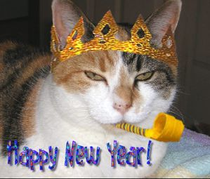 private-category-happynewyear-img.jpg
