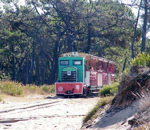petit-train-trojan-002.JPG
