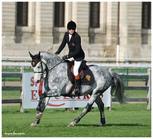Guillaume Canet Jumping Chantilly 20 avril 2013 i