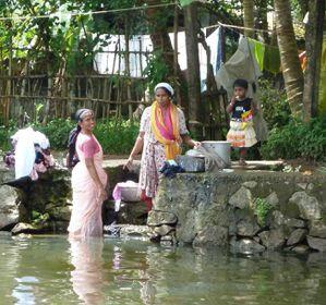 sur les backwaters (3)