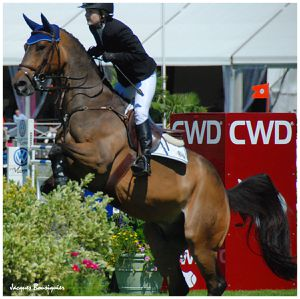 Global Champions Tour Chantilly 08